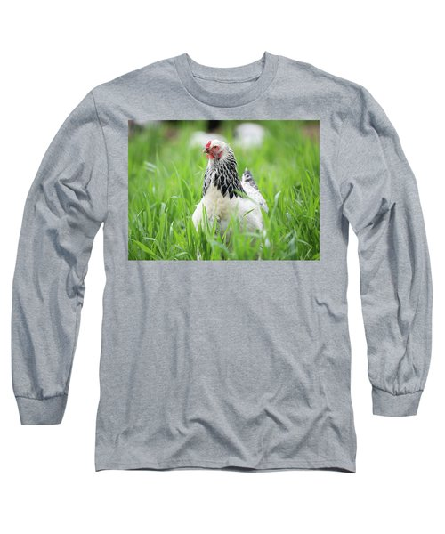 Spring Checken Long Sleeve T-Shirt