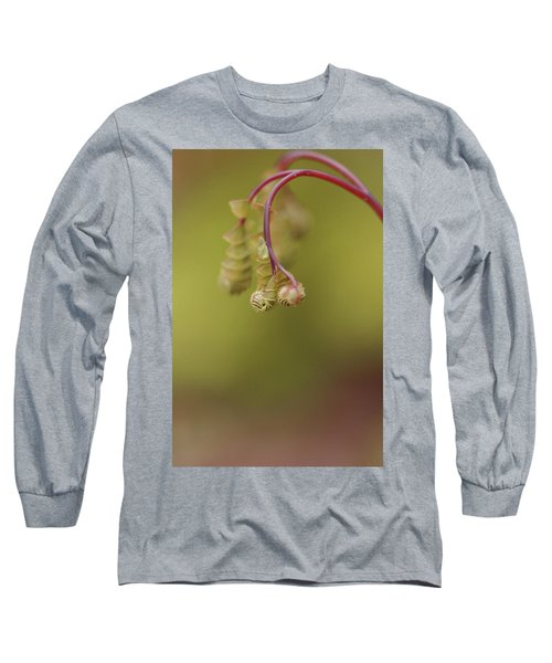 Long Sleeve T-Shirt featuring the photograph Spring Coming 2017 by Jeff Burgess