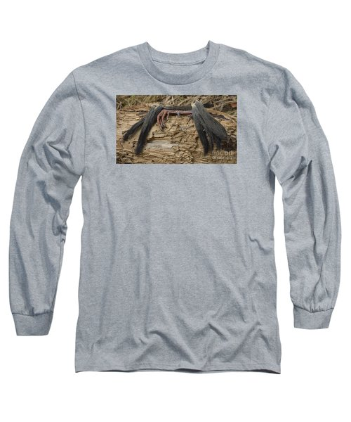 Spring Feathers Long Sleeve T-Shirt by Randy Bodkins
