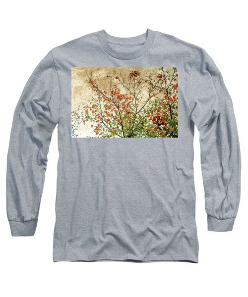 Spring Is Gone Long Sleeve T-Shirt