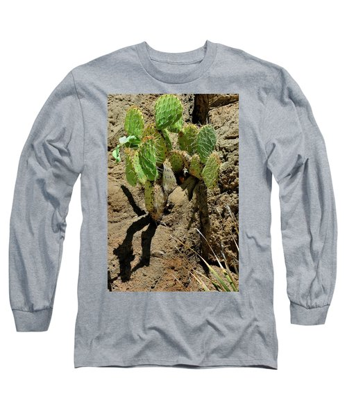 Spring Refreshment Long Sleeve T-Shirt