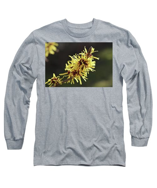 Spring Long Sleeve T-Shirt by Wilhelm Hufnagl