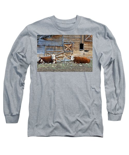 Squires Herefords By The Rustic Barn Long Sleeve T-Shirt