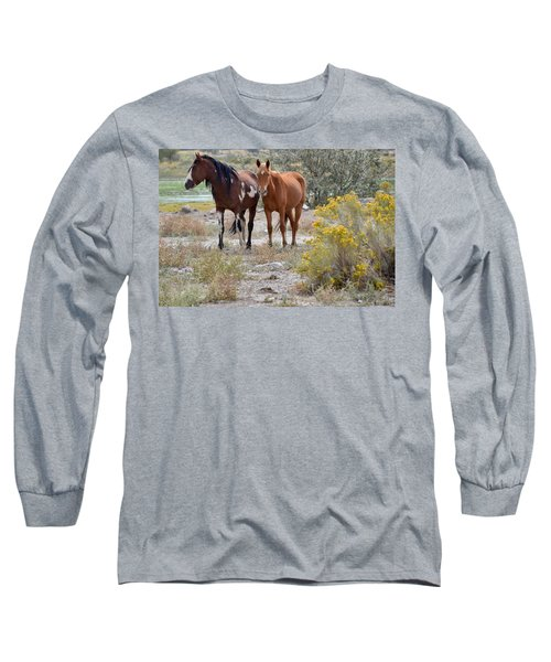 Stallion And Mare Long Sleeve T-Shirt
