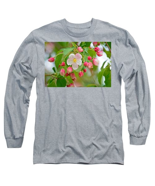 Stand Alone Japanese Cherry Blossom Long Sleeve T-Shirt