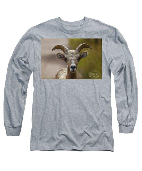 Stare Down Long Sleeve T-Shirt