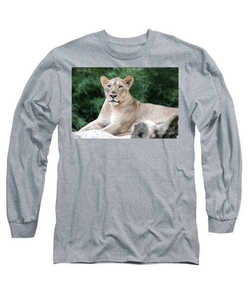 Staring Long Sleeve T-Shirt