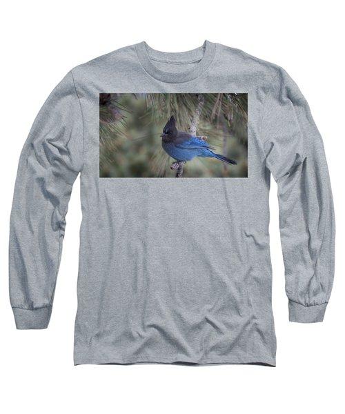 Steller's Jay Long Sleeve T-Shirt by Tyson Smith