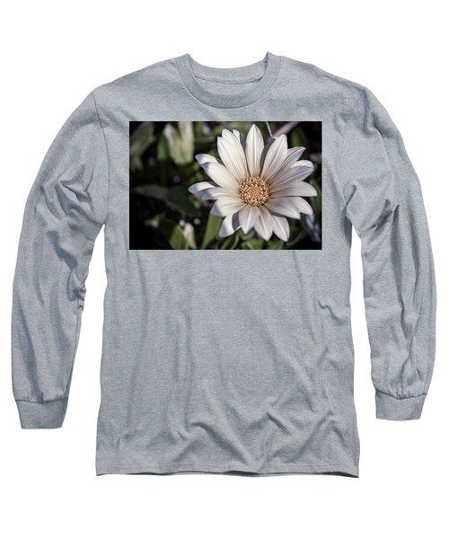 Still Dreaming Long Sleeve T-Shirt