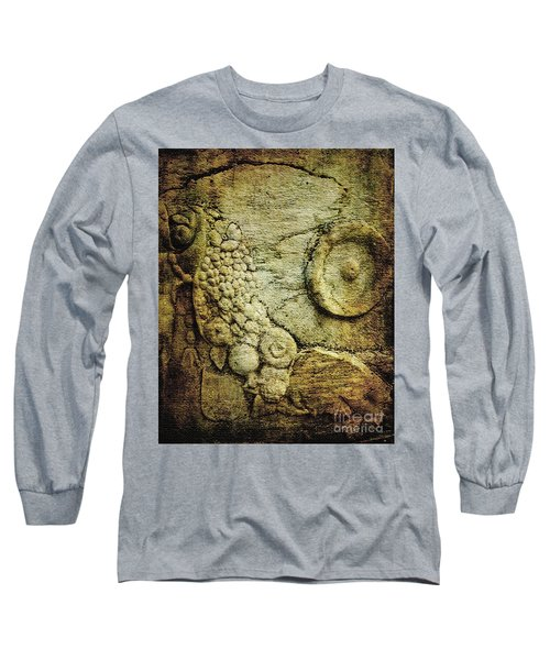 Stone Relief At Ephesus Long Sleeve T-Shirt