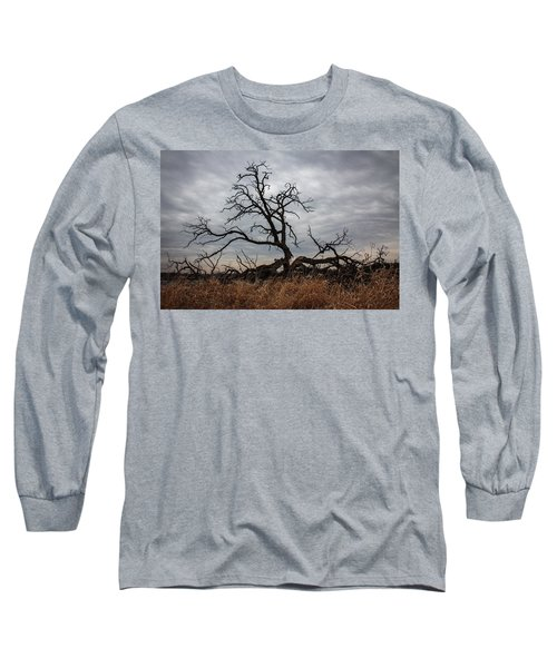 Storms Make Trees Take Deeper Roots  Long Sleeve T-Shirt