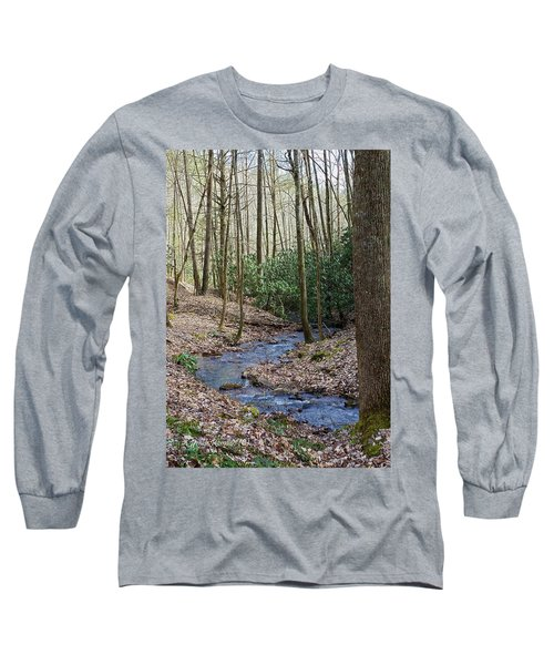Stream In The Winter Woods Long Sleeve T-Shirt