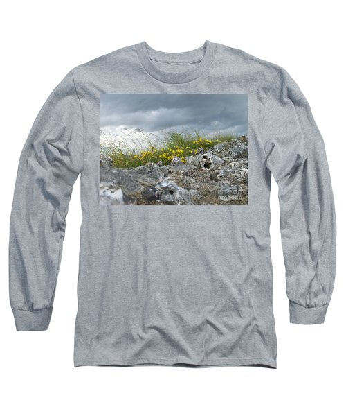 Striking Ruins Long Sleeve T-Shirt