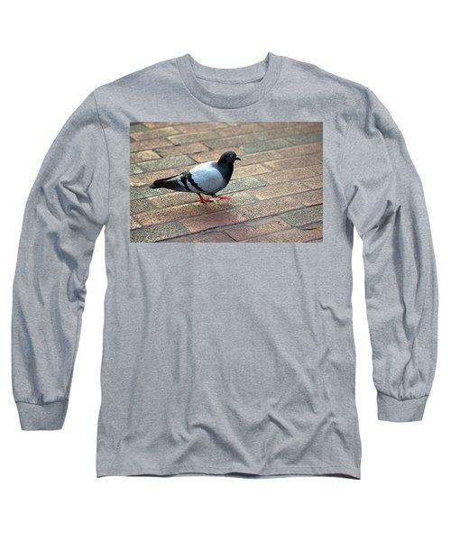 Strutting Pigeon Long Sleeve T-Shirt