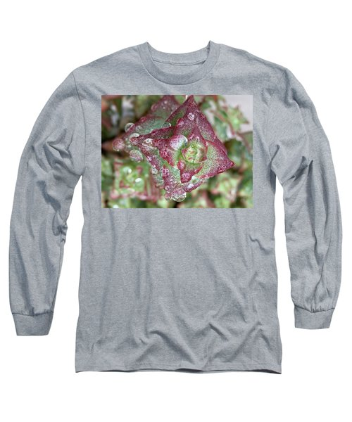 Succulent Abstract Long Sleeve T-Shirt by Russell Keating