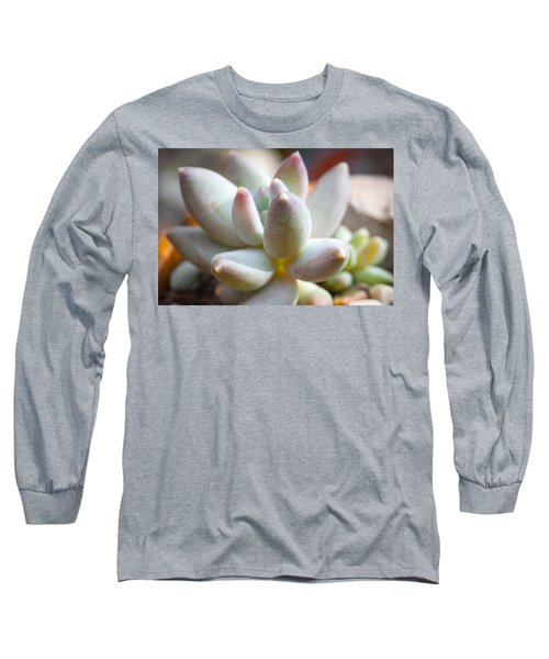 Succulent Cute  Long Sleeve T-Shirt by Catherine Lau