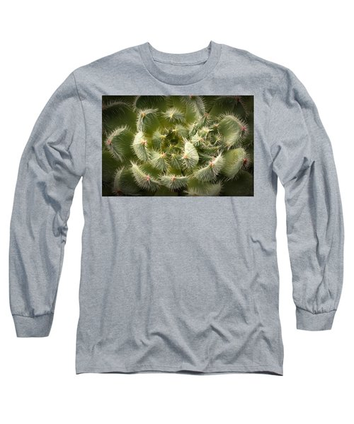 Succulent Pride  Long Sleeve T-Shirt by Catherine Lau
