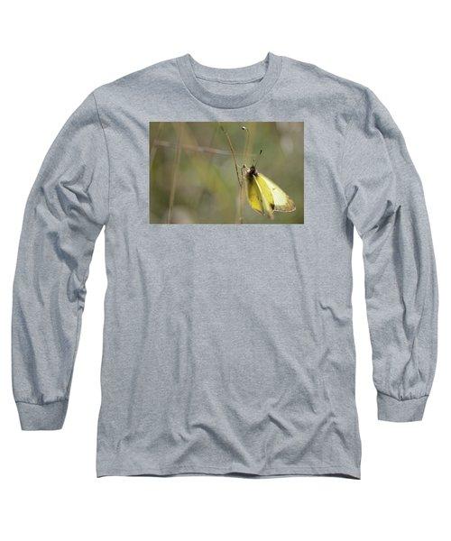 Sulphur Dreams Long Sleeve T-Shirt by Janet Rockburn