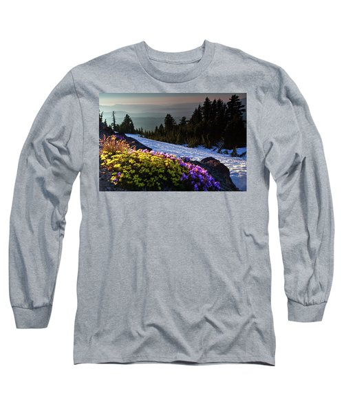 Summer And Winter Long Sleeve T-Shirt