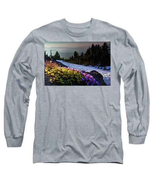 Summer And Winter Long Sleeve T-Shirt