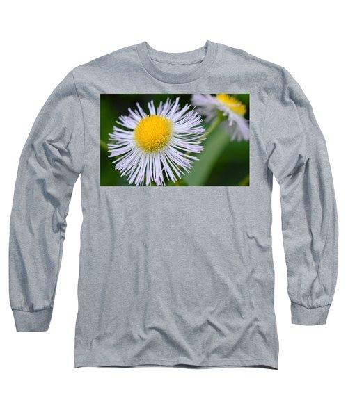 Summer Flower Long Sleeve T-Shirt