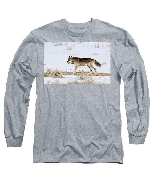 Sunday Stroll Long Sleeve T-Shirt