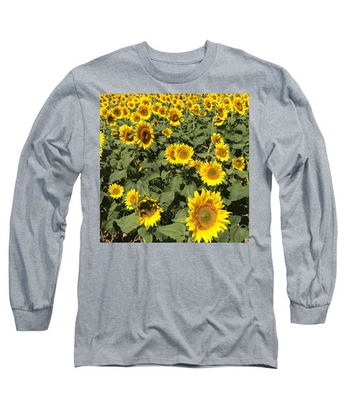 Long Sleeve T-Shirt featuring the photograph Sunflower 2016 by Caroline Stella