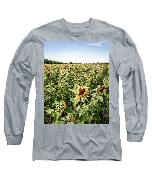 Long Sleeve T-Shirt featuring the photograph Sunflower Field by Alexey Stiop