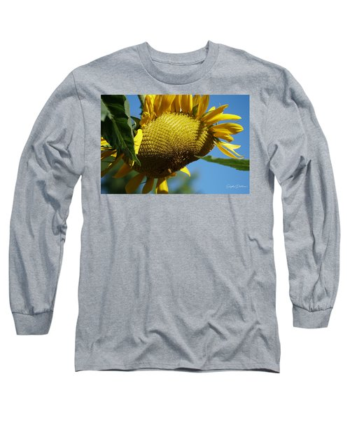 Sunflower, Mammoth With Bees Long Sleeve T-Shirt
