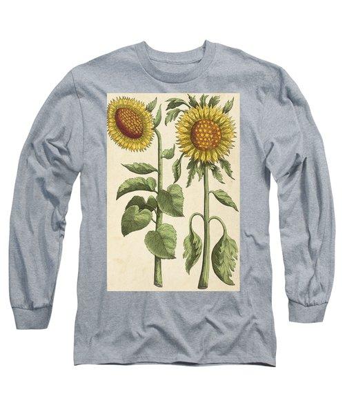 Sunflowers Illustration From Florilegium Long Sleeve T-Shirt
