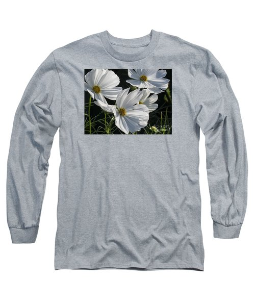 Sunlight And White Cosmos Long Sleeve T-Shirt
