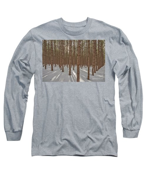 Sunlight Filtering Through A Pine Forest Long Sleeve T-Shirt
