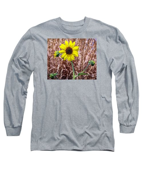 Long Sleeve T-Shirt featuring the photograph Sunshine by Elaine Malott