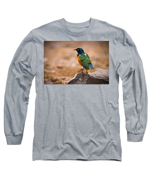 Superb Starling Long Sleeve T-Shirt by Adam Romanowicz