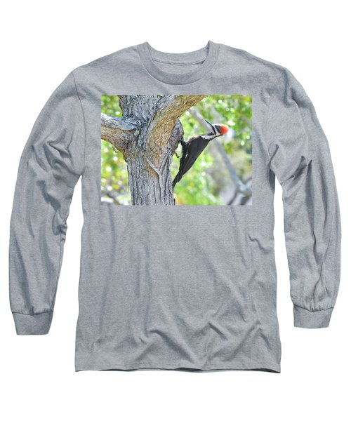 Surprised By Pileated Long Sleeve T-Shirt