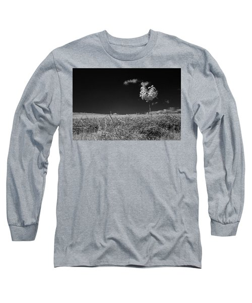 Sycamore Long Sleeve T-Shirt by Keith Elliott