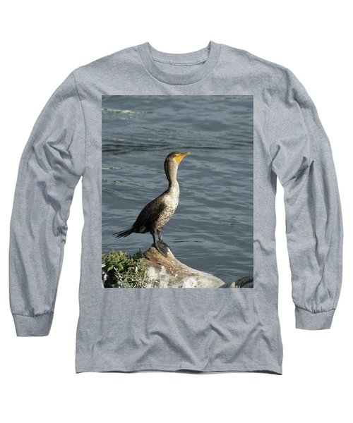 Take My Picture - Cormorant Long Sleeve T-Shirt by Margie Avellino