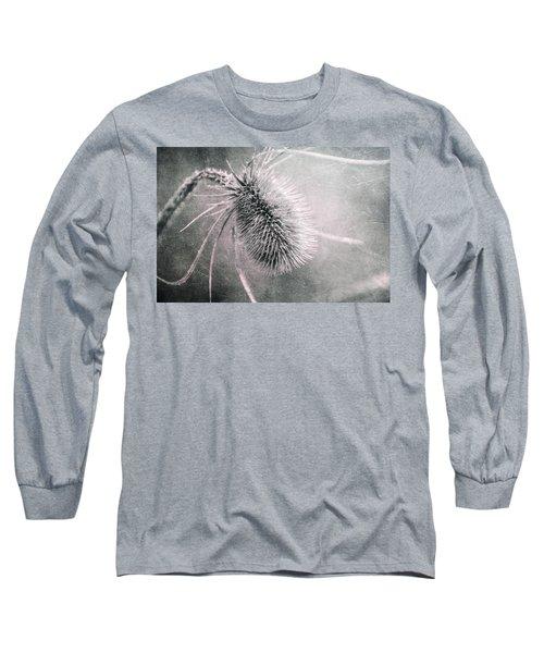 Long Sleeve T-Shirt featuring the photograph Teazel Weed by Tom Mc Nemar
