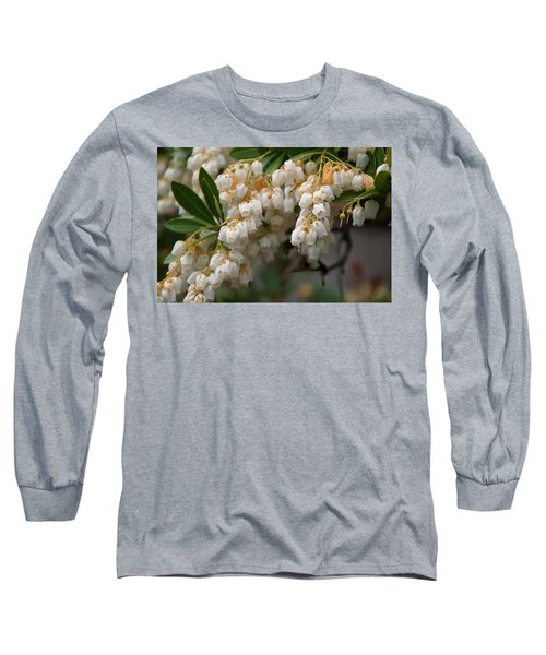 Long Sleeve T-Shirt featuring the photograph Temple Bells Andromedia by Chris Flees