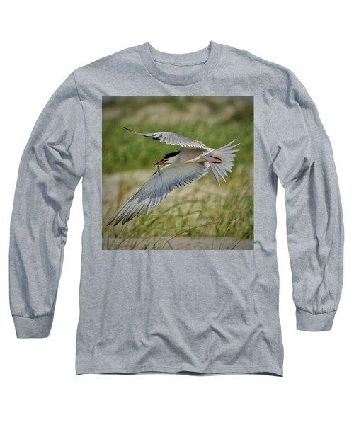 Tern Long Sleeve T-Shirt