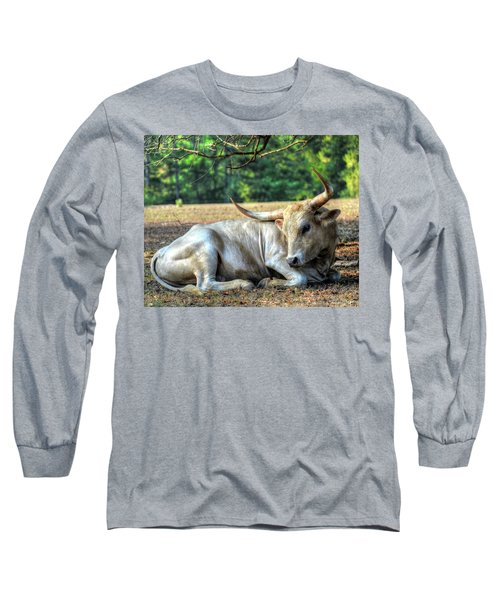 Texas Longhorn Gentle Giant Long Sleeve T-Shirt