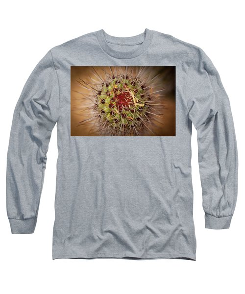 Textures Of Arizona Long Sleeve T-Shirt