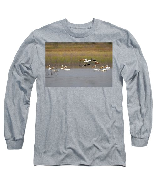 The American White Pelicans Long Sleeve T-Shirt by Ernie Echols