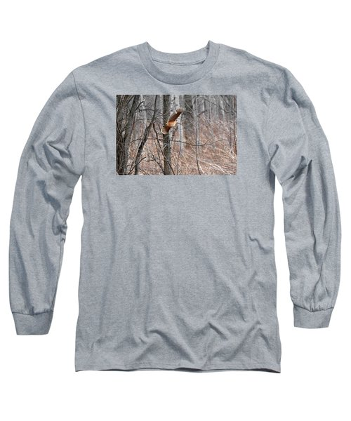The American Woodcock In-flight Long Sleeve T-Shirt by Asbed Iskedjian
