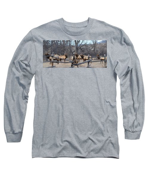 Long Sleeve T-Shirt featuring the photograph The Boys by Billie Colson