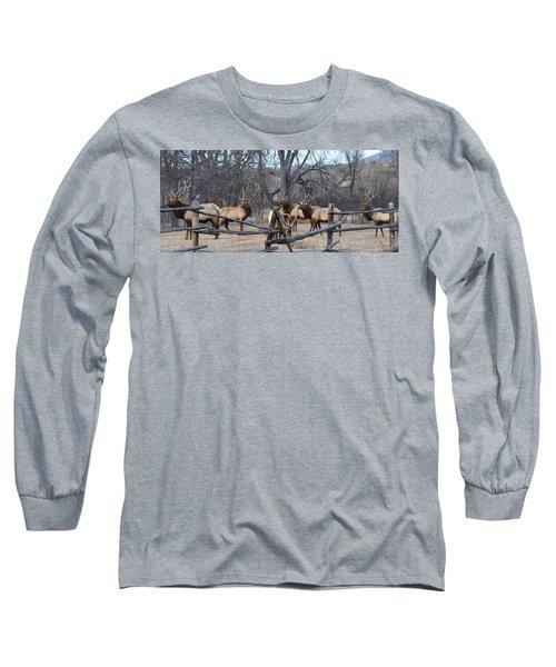 The Boys Long Sleeve T-Shirt by Billie Colson