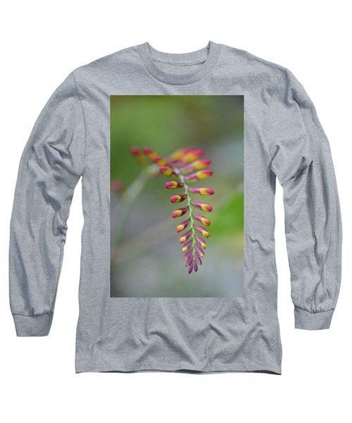 The Budding Arch Long Sleeve T-Shirt by Janet Rockburn