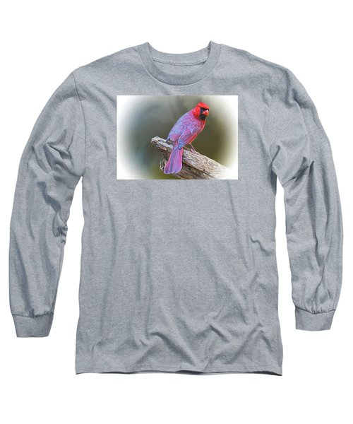 The Cardinal Long Sleeve T-Shirt by Suzanne Handel