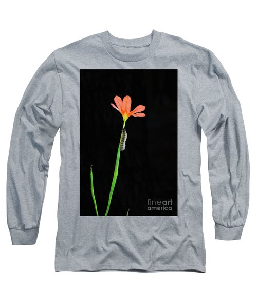 The Climb Long Sleeve T-Shirt by Cassandra Buckley