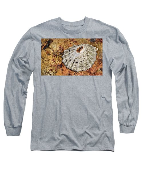 The Common Limpet Long Sleeve T-Shirt by Werner Lehmann